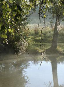 Rybnik Hlavňov